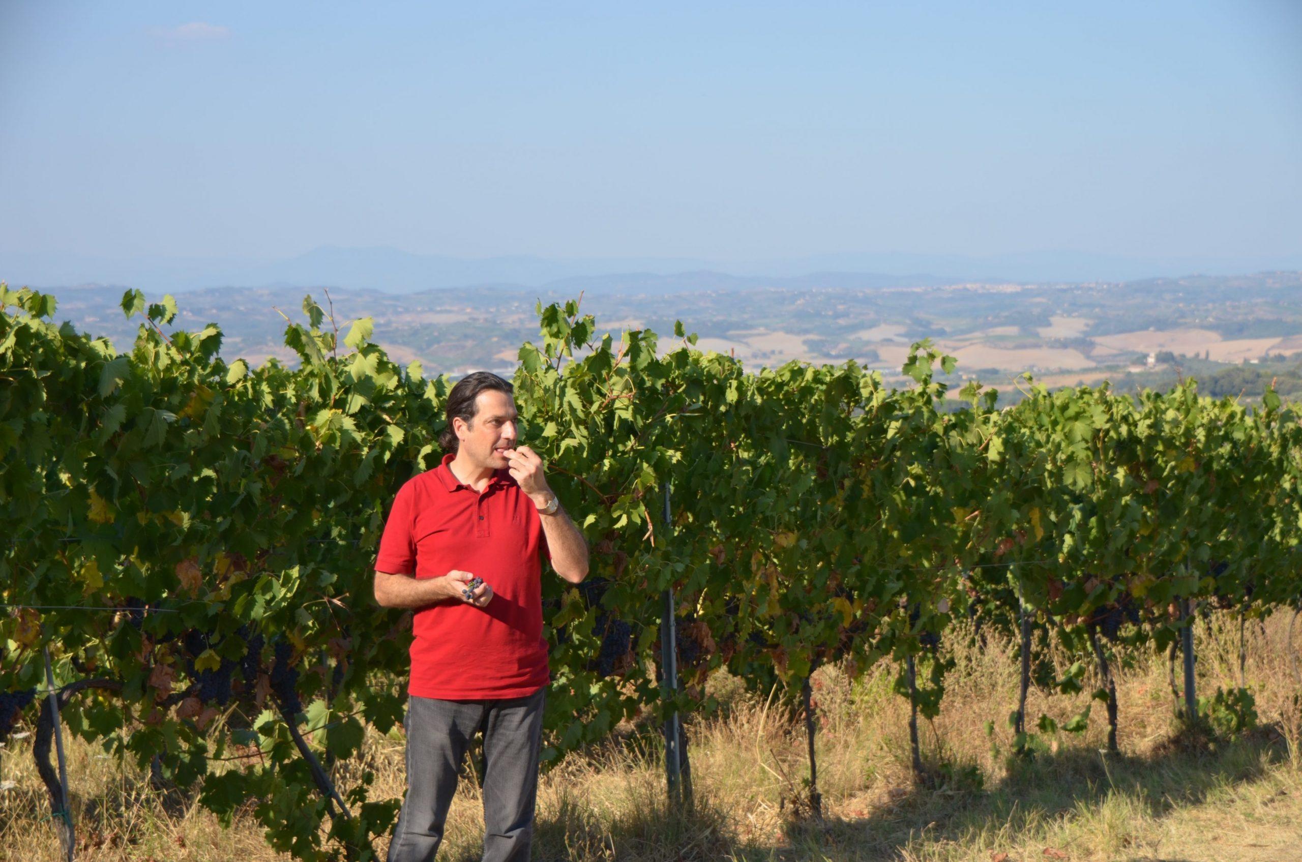 Antonio Nardi dei da Filicaja in vineyard